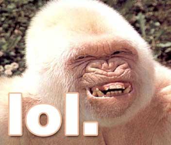 lol-albinogorrilla